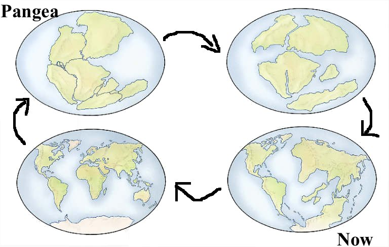 A simple model of the supercontinent Pangaea turning into the 7 continents we have today via continental drift