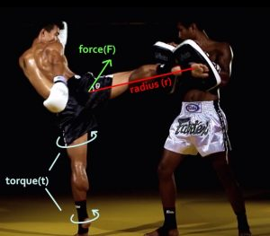 The mechanics involved in a roundhouse kick