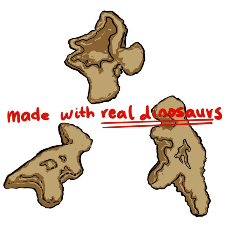 Dino Nuggets: The Evolution of Birds from Dinosaurs